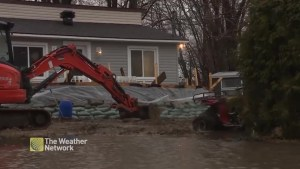 Flooding in Rigaud, Quebec as heavy rain falls